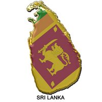 Fraudulent shoe imports cause losses to Sri Lanka