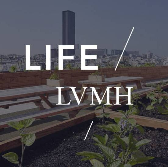 LVMH's engagement with environment and biodiversity